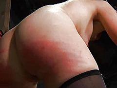 Beauty loves brutal pleasuring